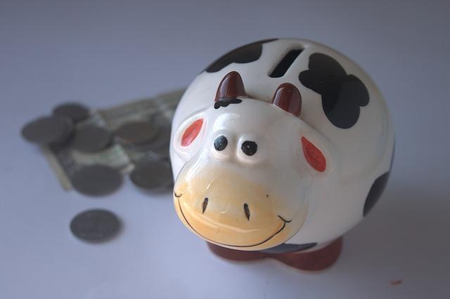 Organize seus gastos mensais em 5 passos